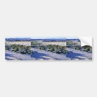 El hábitat para el valle Coachella franja-tocó con Pegatina Para Auto