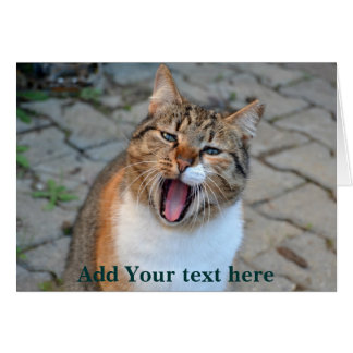 El hablar del gato tarjeta de felicitación