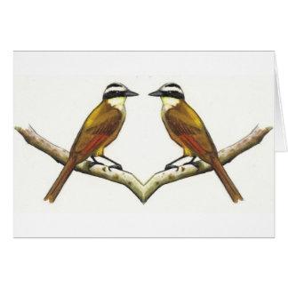 El hacer frente de dos pájaros: Kiskadees en lápiz Tarjeta De Felicitación
