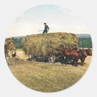 El hacer heno en Nueva Inglaterra - vintage 1900 Pegatina Redonda