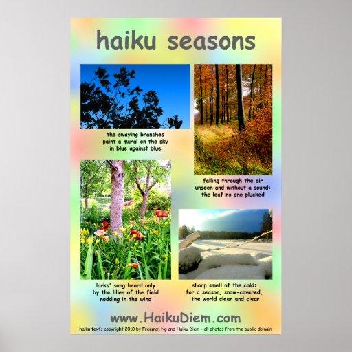 El Haiku sazona el poster (el fondo multicolor)