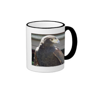El halcón de Harris Taza De Dos Colores