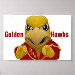 El halcón de oro de Rogers vistió la mascota Poster