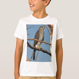 El halcón del tonelero embroma la camiseta