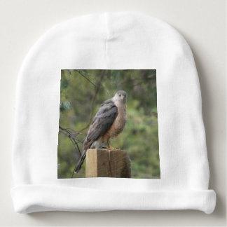 El halcón del tonelero gorrito para bebe