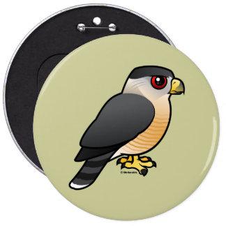 El halcón del tonelero pin redondo de 6 pulgadas
