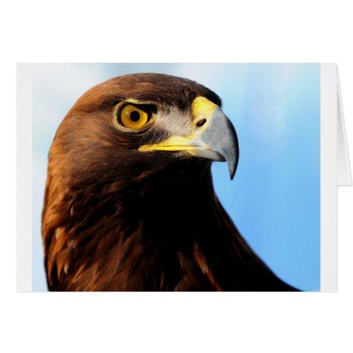 El halcón majestuoso felicitacion