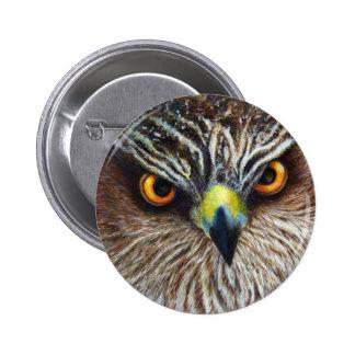 El halcón observa el botón pin redondo de 2 pulgadas