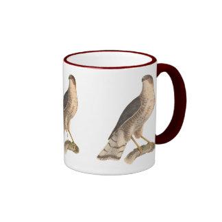 El halcón Pizarra-coloreado(fuscus de Astur) Taza De Dos Colores