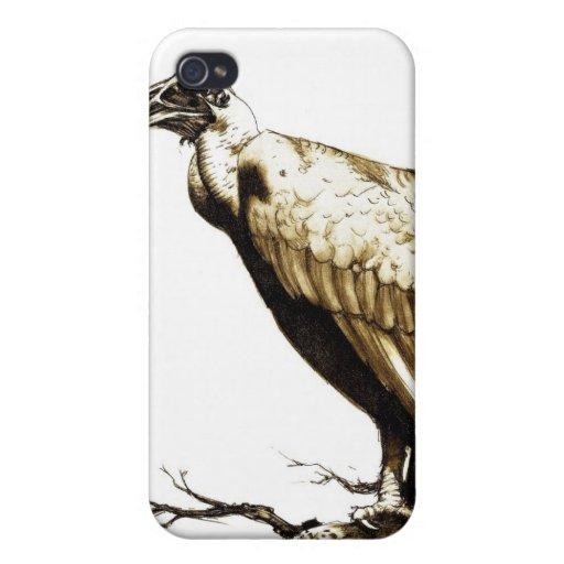 El halcón viejo iPhone 4/4S carcasas