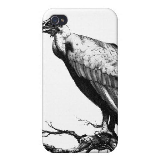 El halcón viejo iPhone 4 funda