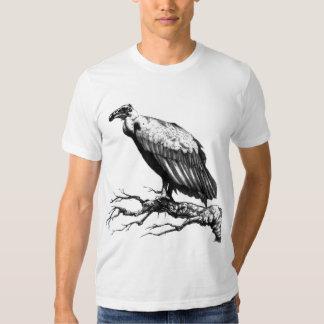 El halcón viejo playera