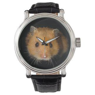 El hámster reloj