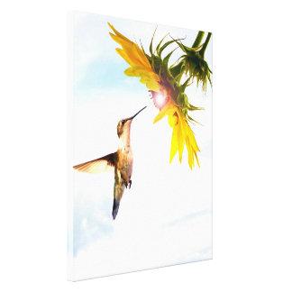 El healinglove del paraíso del colibrí maravilloso lona envuelta para galerias