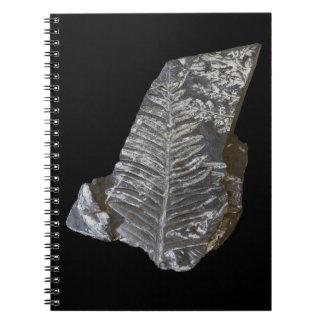 El helecho fosilizado deja la foto en negro libreta espiral