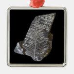 El helecho fosilizado deja la foto en negro adorno de reyes