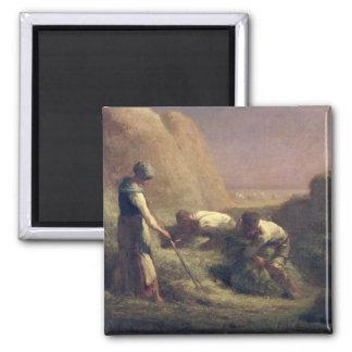 El heno Trussers, 1850-51 Imán Cuadrado