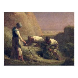 El heno Trussers, 1850-51 Postales