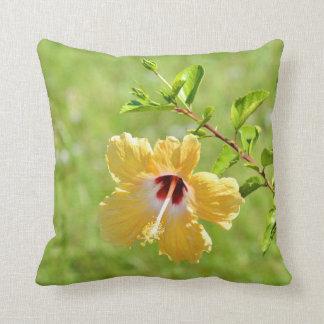 El hibisco amarillo florece la almohada