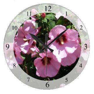 El hibisco rosado florece el reloj