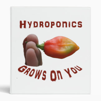 El hidrocultivo crece en usted los dedos del haban