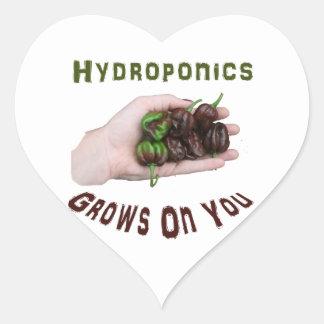 El hidrocultivo produce en usted el habanero del pegatina corazon personalizadas