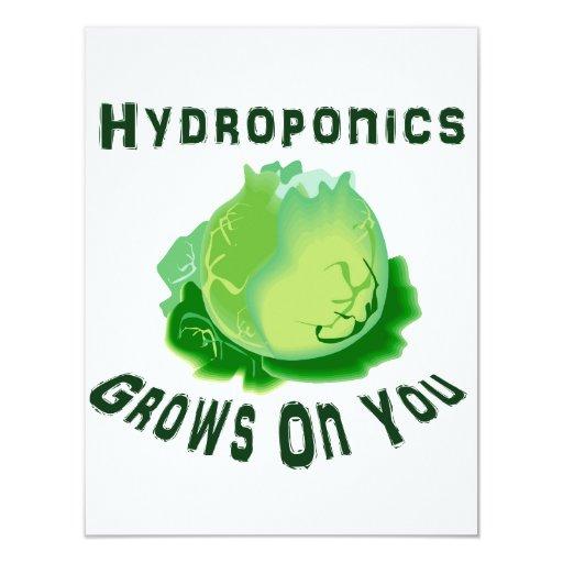 El hidrocultivo produce en usted lechuga invitación 10,8 x 13,9 cm