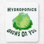 El hidrocultivo produce en usted lechuga alfombrilla de ratón