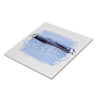El hielo cubrió el alambre azulejos