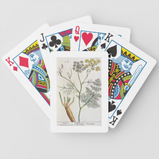 """El hinojo, platea 288 """"de un herbario curioso"""", pu barajas de cartas"""