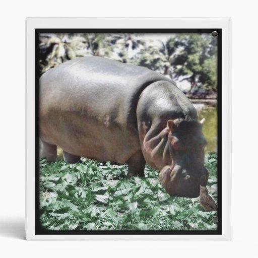 El hipopótamo y el pájaro