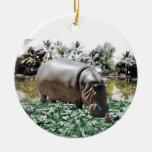 El hipopótamo y el pájaro adorno redondo de cerámica