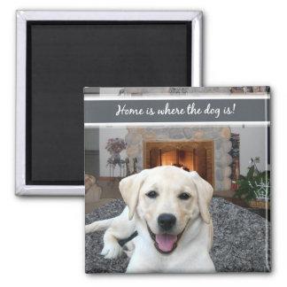 El hogar es donde está el perro imán para frigorífico