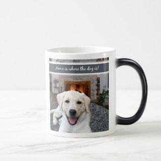 El hogar es donde está el perro taza mágica
