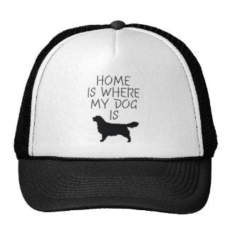 El hogar es donde está mi perro (el golden retriev gorras