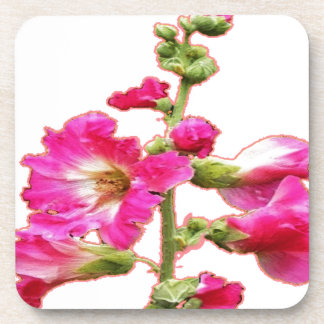 El Hollyhock rosado florece los regalos por Posavasos De Bebida