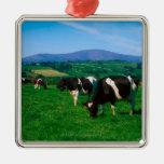 El Holstein-frisón se acobarda cerca de Borris, Adorno Navideño Cuadrado De Metal