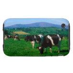 El Holstein-frisón se acobarda cerca de Borris, co iPhone 3 Tough Carcasas
