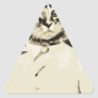 El hombre del gato hace pegatina de triangulo personalizadas