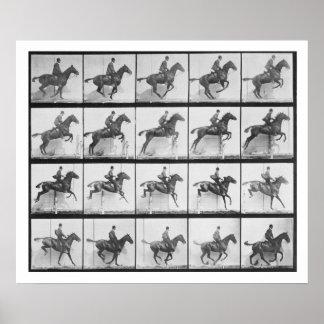 El hombre y el caballo que saltan una cerca plate posters