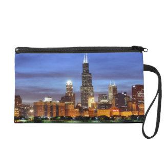 El horizonte de Chicago del planetario de Adler