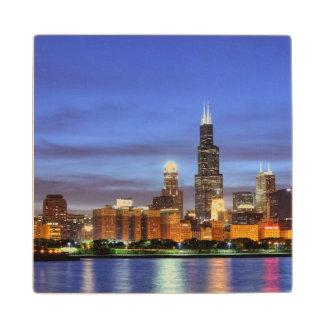 El horizonte de Chicago del planetario de Adler Posavasos De Arce