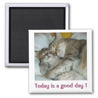 ¡El hoy es un buen día! Imán de los gatos