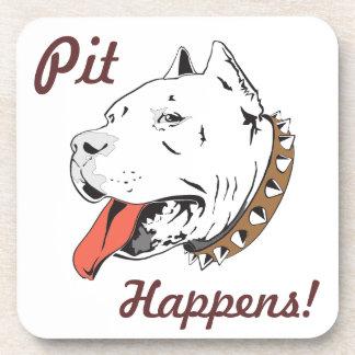 """El """"hoyo sucede"""" pitbull fijado los prácticos de posavasos"""
