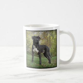 ¡El Hudson - amor de I mi pitbull Terrier! Taza