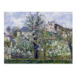 El huerto con los árboles en flor tarjetas postales