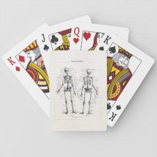 El hueso humano esquelético de la anatomía del baraja de póquer