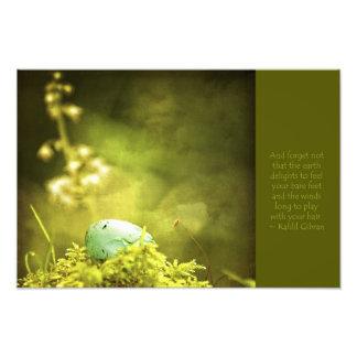 El huevo del petirrojo en musgo con el refrán insp impresion fotografica
