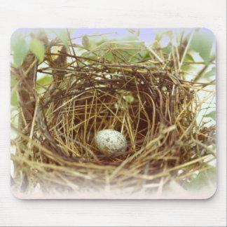 El huevo Mousepad del cardenal