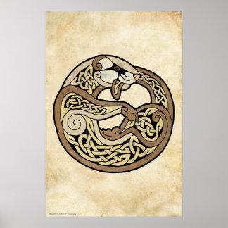 El hurón céltico póster